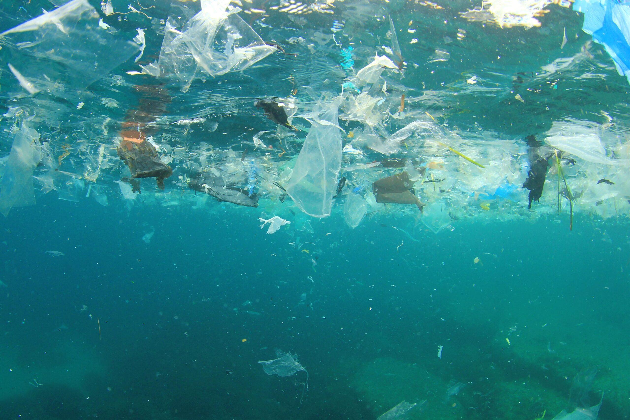 România riscă să blocheze reducerea consumului de pungi de plastic în Europa